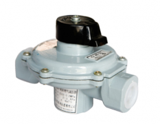 Direct-acting Spring-loaded Gas Pressure Regulator
