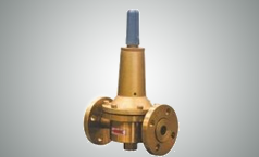 RTZ-※/0.6 Type High-pressure Pipeline LPG Regulator